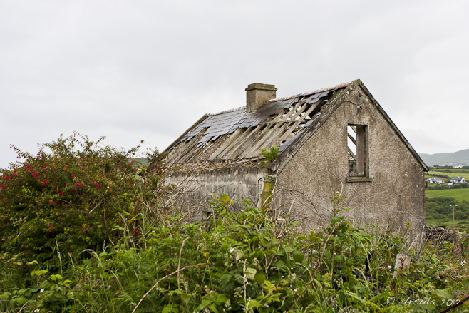 Abandoned Dwelling in Northern Ireland